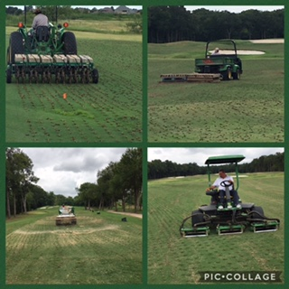 aerification fairways