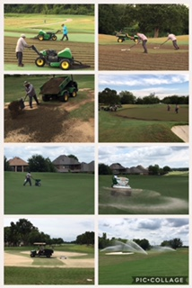 aerification greens